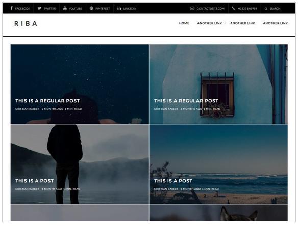Widok ekranu - Riba Lite Theme - Szablony WordPress