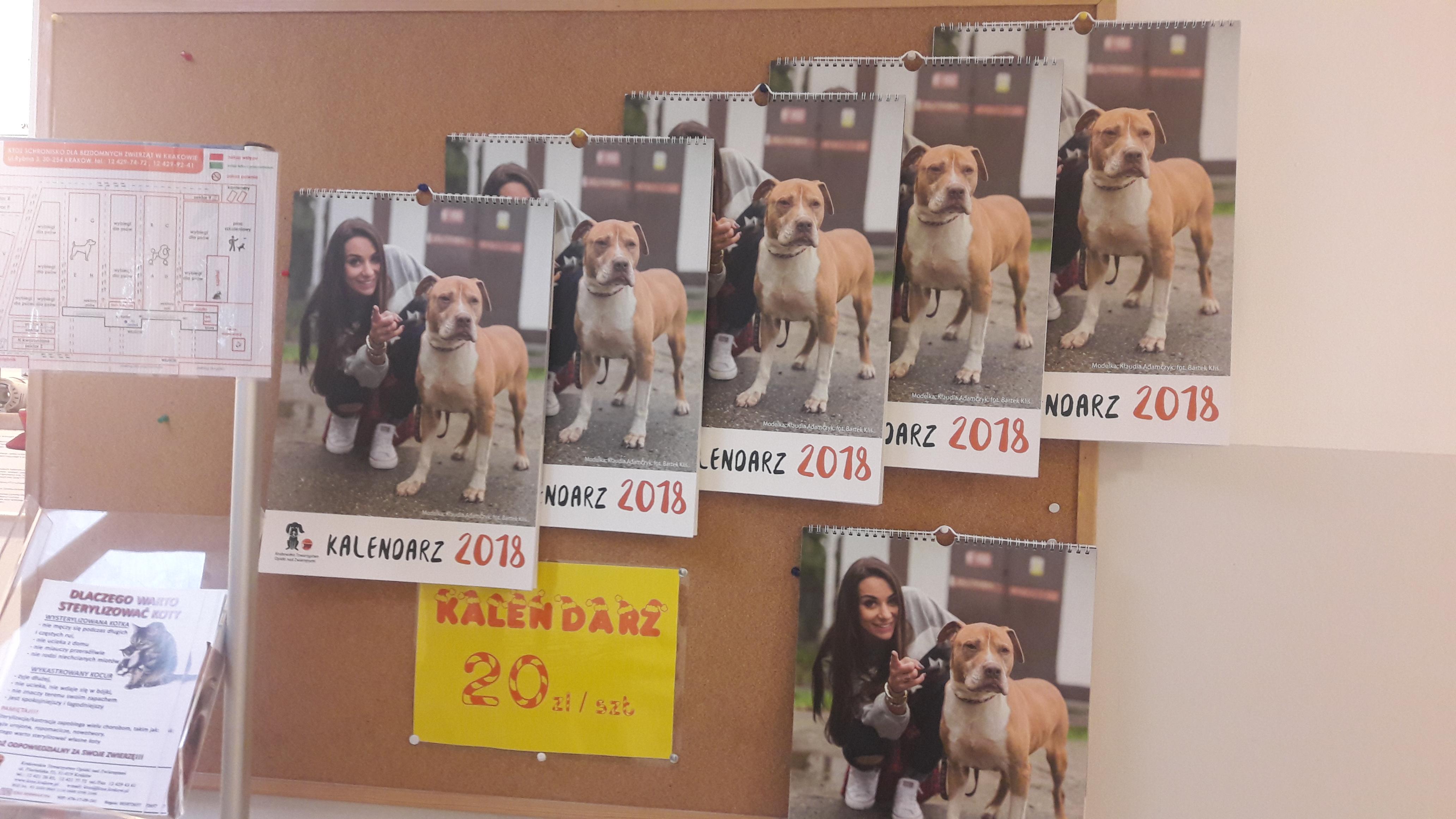Kalendarz krakowskiego schroniska dla zwierząt