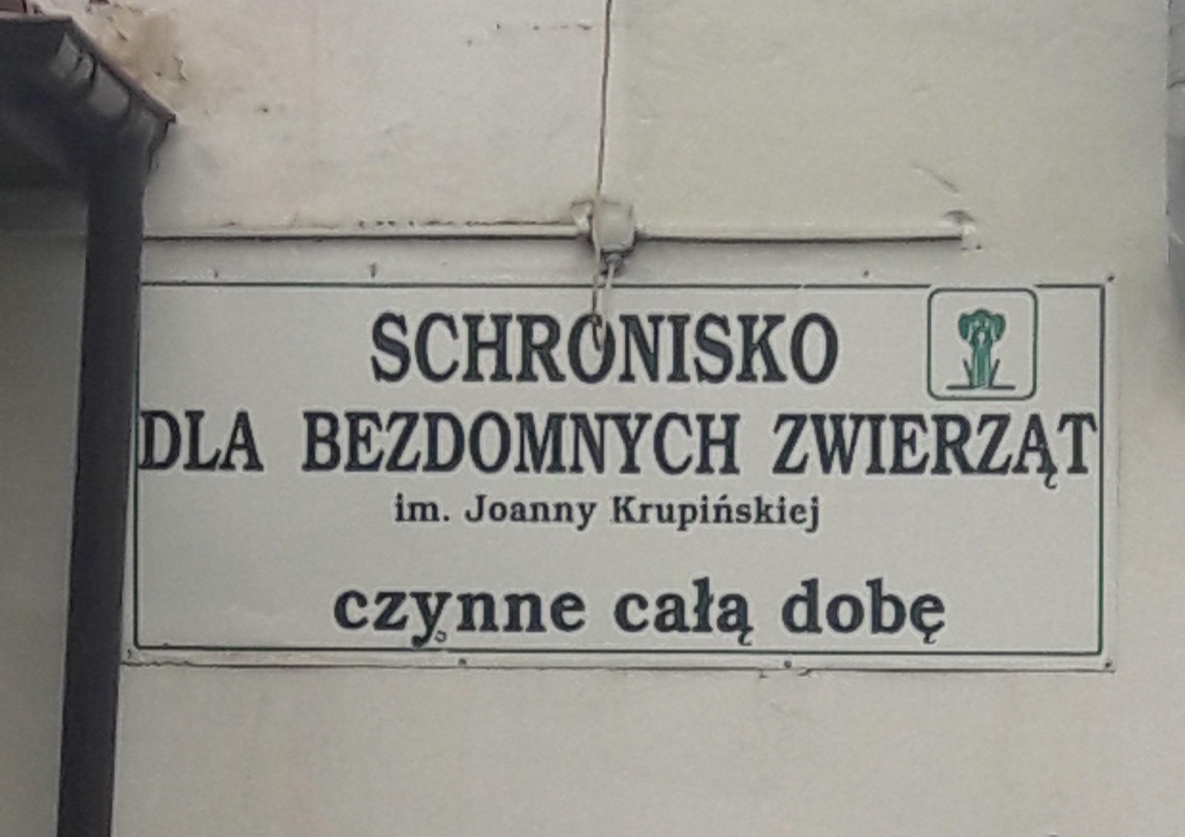 Schronisko dla bezdomnych zwierząt w Krakowie